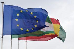 Flags Flag Of The European Union - pontzi / Pixabay