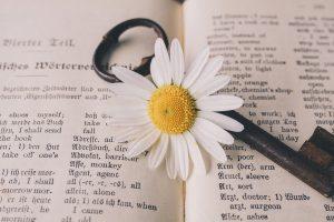 Key Old Flower Nostalgic Vintage - suju / Pixabay