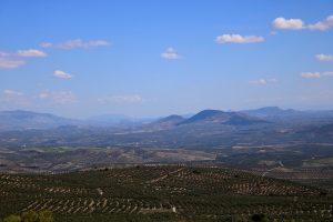 Landscape Baeza  - coqui_07 / Pixabay