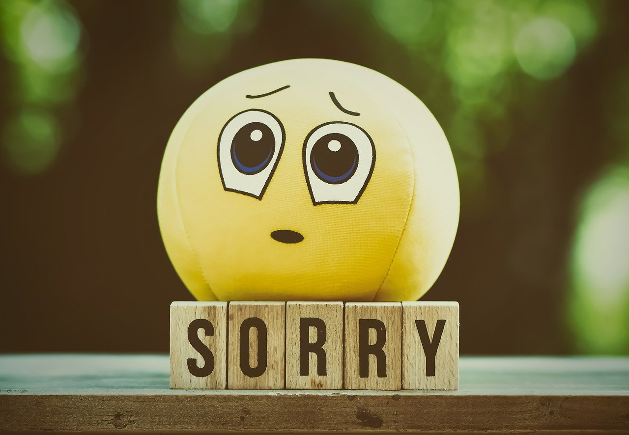 Excuse Me Sorry Smiley Cute  - Alexas_Fotos / Pixabay